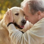 Elderly Care in Greenville SC: Adopting a Dog