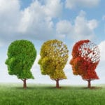 Elderly Care in Columbia SC: Alzheimer's Progression