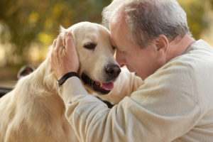 Elder Care in Seneca SC: Adopting a Pet